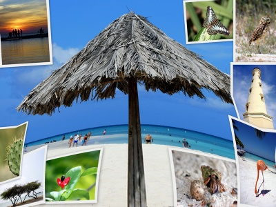 Aruba Vacation Collage